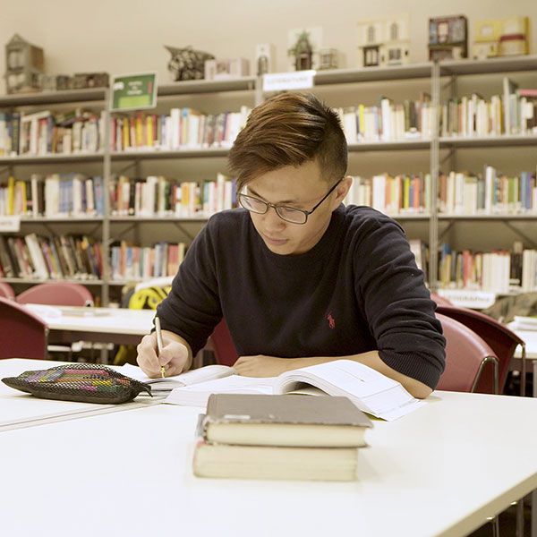 A student in the library at Bellerbys